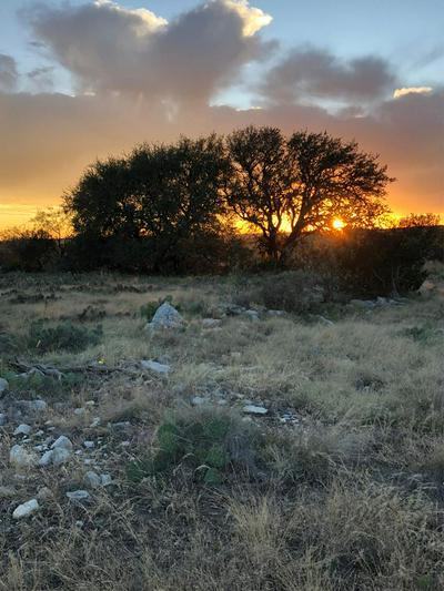 0000 HWY 277, ELDORADO, TX 76936 - Photo 1