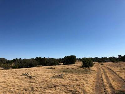 4300 COUNTY ROAD 300, Eldorado, TX 76936 - Photo 1