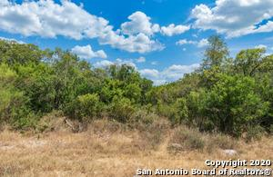 LOT 195 COUNTY ROAD 2801, Mico, TX 78056 - Photo 2