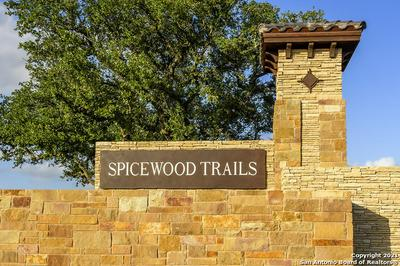 1 SPICEWOOD TRAILS DRIVE LOT 234, SPICEWOOD, TX 78669 - Photo 1