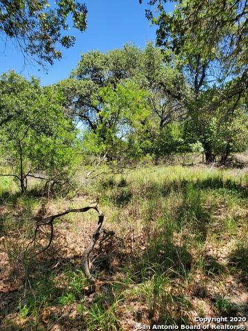 103 CHERRY RDG, Floresville, TX 78114 - Photo 1