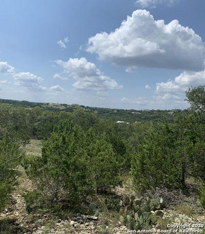 278 MUSTANG LN, Spring Branch, TX 78070 - Photo 1
