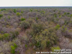 TRACT 9 & 10 PRIVATE ROAD 2221, Nixon, TX 78140 - Photo 2