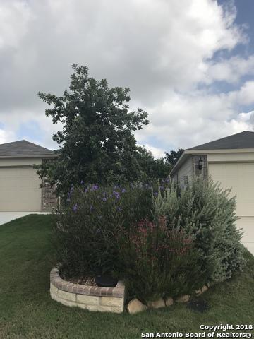 12815 SAND HOLLY, San Antonio, TX 78253 - Photo 2