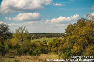 507 UPPER SISTERDALE RD, Comfort, TX 78013 - Photo 2