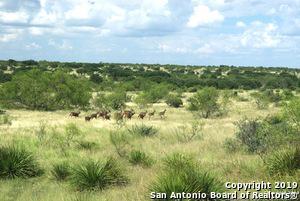 1101B SUTTON COUNTY ROAD 320, Sonora, TX 76950 - Photo 1