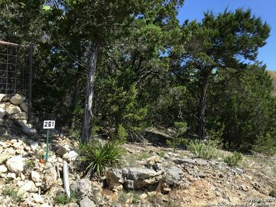 331 THOROUGHBRED LN, SPRING BRANCH, TX 78070 - Photo 1