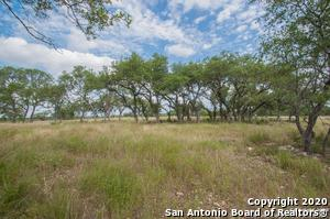 0 TBD, Canyon Lake, TX 78133 - Photo 2