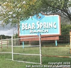 259 COUNTY ROAD 2744, Mico, TX 78056 - Photo 1