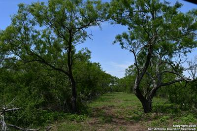 TRACT 2 COUNTY ROAD 334, Charlotte, TX 78011 - Photo 2