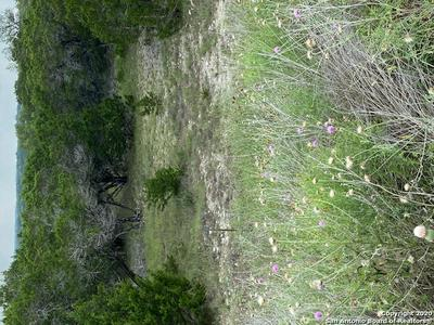 193 RESTLESS WIND, Spring Branch, TX 78070 - Photo 2