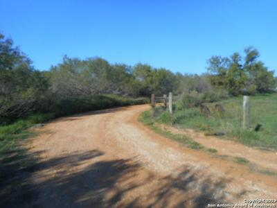 TBD COUNTY ROAD 317, Charlotte, TX 78011 - Photo 2