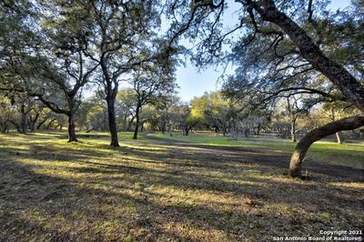 332 COUNTY ROAD 381, San Antonio, TX 78253 - Photo 2