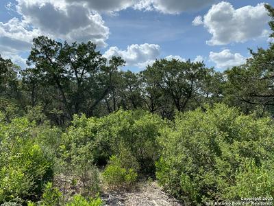 LOT 13 BLOCK 1 PRIVATE ROAD 2771, Mico, TX 78056 - Photo 2