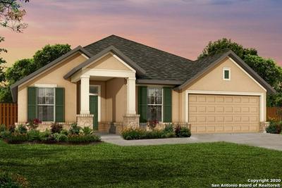359 BORCHERS BLVD, New Braunfels, TX 78132 - Photo 1