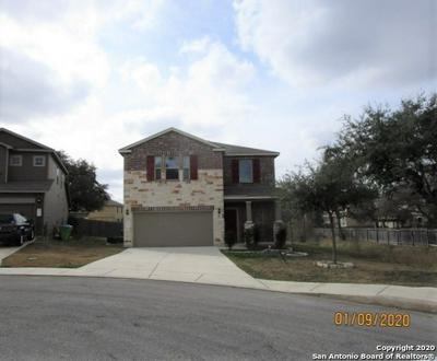 10538 ROYAL EST, San Antonio, TX 78245 - Photo 2