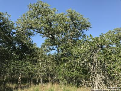 00000 TURKEY TREE TRAIL, Seguin, TX 78155 - Photo 1