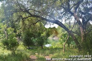 993 NUECES RIVER RANCH RD, Crystal City, TX 78839 - Photo 2