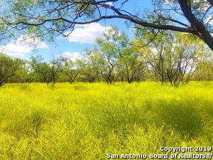 000 MESQUITE SPRINGS RANCH, Menard, TX 76859 - Photo 1