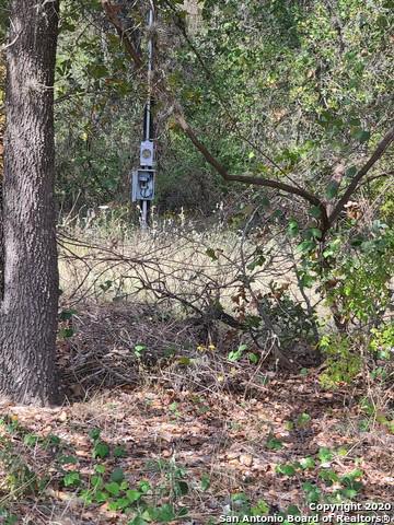 23035 SANDY FOREST DR, Elmendorf, TX 78112 - Photo 2