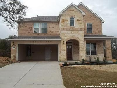 24776 BUCK CRK, San Antonio, TX 78255 - Photo 1