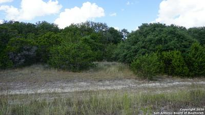 614 INDIAN TRL, Spring Branch, TX 78070 - Photo 1