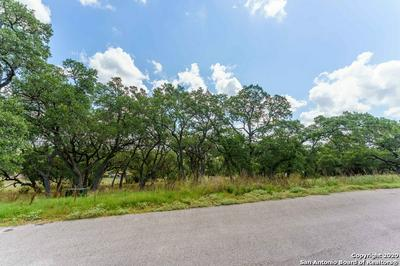 3113 CAMPESTRES, Spring Branch, TX 78070 - Photo 2