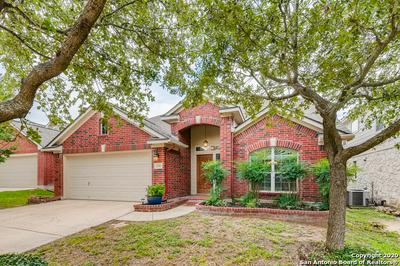 1239 ALPINE POND, San Antonio, TX 78260 - Photo 2