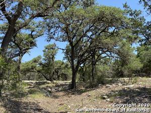 278 CATTAIL RD, Leakey, TX 78873 - Photo 2