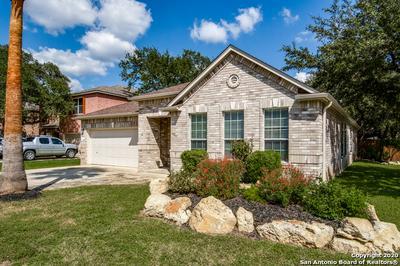 24402 DREW GAP, San Antonio, TX 78255 - Photo 1