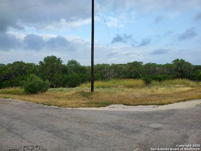 CORNER OF N JOHN BIRD & W. ALEX JORDAN, Blanco, TX 78606 - Photo 2
