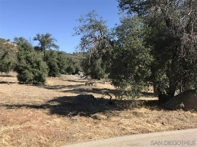 0 OLD HIGHWAY 80 LOT H16, Descanso, CA 91916 - Photo 2