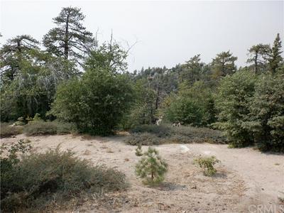 32966 CANYON DR, Green Valley Lake, CA 92341 - Photo 2