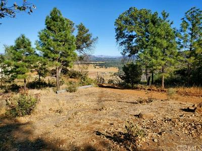 21960 ST HELENA CREEK RD, Middletown, CA 95461 - Photo 1