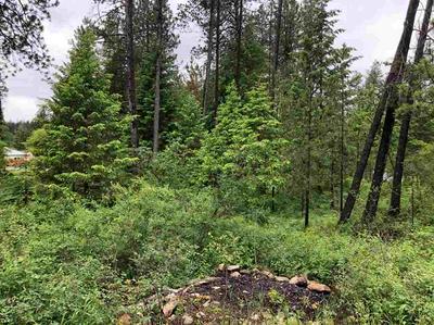 377XX N LAKESIDE DR, Elk, WA 99099 - Photo 1