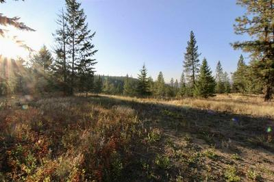 0 RAIL CANYON LOT 3 RD, Ford, WA 99103 - Photo 1