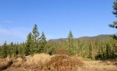 0 RAIL CANYON LOT 6 RD, Ford, WA 99013 - Photo 1