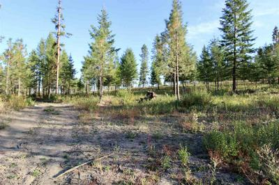 0 RAIL CANYON LOT 9 RD, Ford, WA 99013 - Photo 2