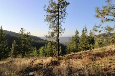 0 RAIL CANYON LOT 3 RD, Ford, WA 99103 - Photo 2