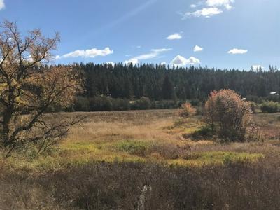 0 NKA, Elk, WA 99009 - Photo 2