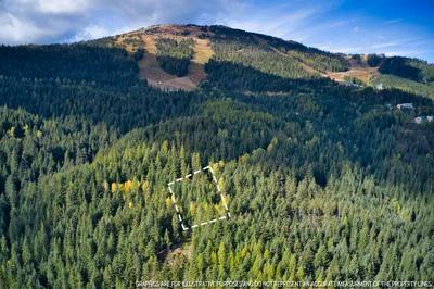 LT 9 BLK 2 SNOWBLAZE REC TRACTS # 58221.0209, Mead, WA 99021 - Photo 1