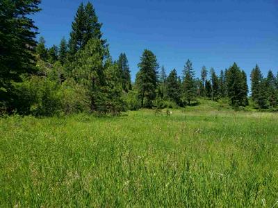 842TBD VALLEY WESTSIDE RD, Colville, WA 99114 - Photo 2