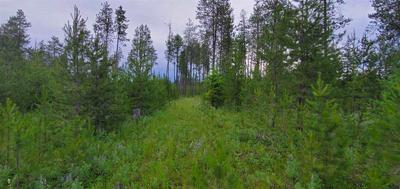 12417 E BRIDGES RD, Elk, WA 99009 - Photo 2