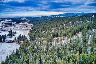 15808 N FORKER RD, Spokane, WA 99217 - Photo 2