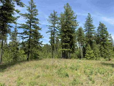 12XXX E ENOCH RD, Elk, WA 99009 - Photo 2
