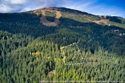 LT 8 BLK2 SNOWBLAZE REC TRACTS # 58221.0208, Mead, WA 99021 - Photo 1