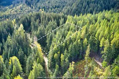 LT 9 BLK 2 SNOWBLAZE REC TRACTS # 58221.0209, Mead, WA 99021 - Photo 2