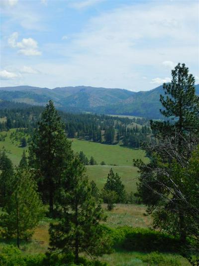 TBD WOLF WAY, Hunters, WA 99137 - Photo 2