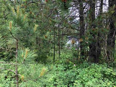 377XX N LAKESIDE DR, Elk, WA 99099 - Photo 2