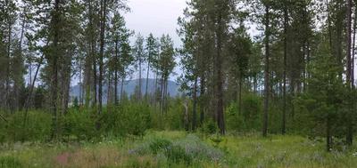 12417 E BRIDGES RD, Elk, WA 99009 - Photo 1